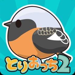 小鸟观察2ios版 V2.4.0 苹果版