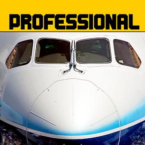 模拟飞行787苹果版