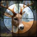 鹿猎人2020 V2.0.3 破解版