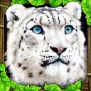 雪豹模拟 V1.2 安卓版