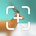 Focus on V1.0 �O果版