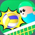 疯狂排球 V1.0 安卓版
