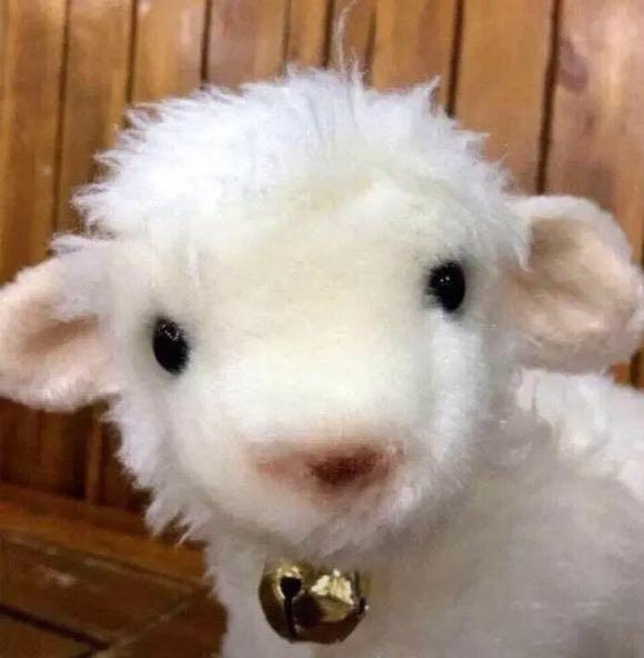 抖音可爱小羊头像