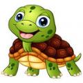 亚太区块龟赚钱入口,亚太区块龟(云养龟)手游下载地址