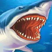 鲨鱼街玩 V1.0.3 安卓版