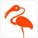 火烈鸟 V1.09 安卓版