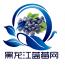 黑龙江蓝莓网 V5.0.0 安卓版