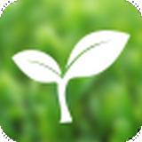 茶叶商城 V1.1 安卓版