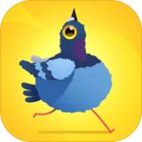 疯狂鸽子模拟器 V1.0.0 安卓版