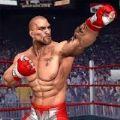 拳击拳手 V1.0 安卓版