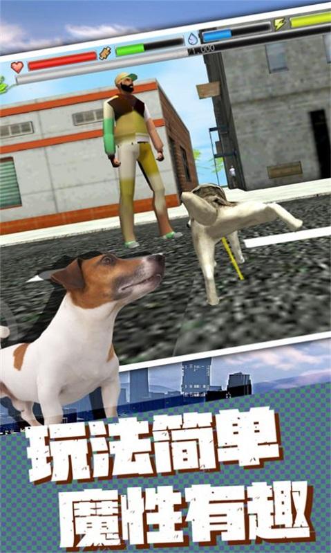 流浪狗生存模拟器正式版